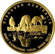 Australia 50 Dollars Grey Kangaroo 2006 P Proof KM# 955 DISCOVER . AUSTRALIA P 2006 GREY KANGAROO 1/2OZ. 9999 GOLD coin reverse
