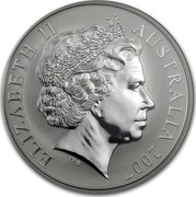 Australia One Dollar Australian Kangaroo 2007 KM# 851 ELIZABETH II AUSTRALIA 2007 IRB coin obverse