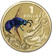 Australia 1 Dollar Cuckoo Wasp 2014  1 DOLLAR coin reverse