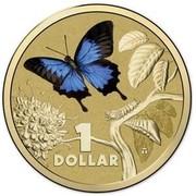 Australia 1 Dollar Ulysses Butterfly 2014  1 DOLLAR coin reverse