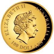 Australia 100 Dollars A Close-Up Portrait of a Koala 2014 ELIZABETH II AUSTRALIA 100 DOLLARS IRB coin obverse