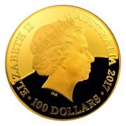 Australia 100 Dollars Australia Celestial Dome - Southern Sky 2017 ELIZABETH II AUSTRALIA 2017 100 DOLLARS IRB coin obverse