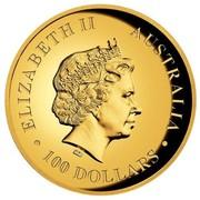 Australia 100 Dollars Australian Koala 2015 ELIZABETH II AUSTRALIA 100 DOLLARS IRB coin obverse