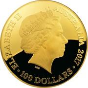 Australia 100 Dollars Northern Sky 2017 ELIZABETH II AUSTRALIA 2017 100 DOLLARS IRB coin obverse