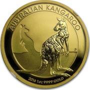 Australia 100 Dollars Resting Kangaroo 2016  AUSTRALIAN KANGAROO P 2016 1 OZ 9999 GOLD IJ coin reverse