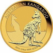 Australia 25 Dollars Resting Kangaroo 2016 AUSTRALIAN KANGAROO P 2016 1/4OZ 9999 GOLD coin reverse