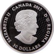 Canada 30 Dollars Celebrating Canada 2017 Proof ELIZABETH II CANADA 2017 D G REGINA 30 DOLLARS coin obverse
