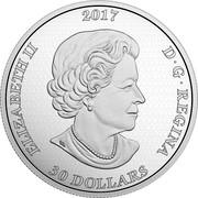 Canada 30 Dollars Gate to the Enchanted Garden 2017  ELIZABETH II 2017 D G REGINA 30 DOLLARS SB coin obverse