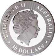 Australia 30 Dollars Kangaroo bounding left 2017 ELIZABETH II AUSTRALIA 30 DOLLARS IRB coin obverse