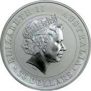 Australia 30 Dollars Koala 2014  ELIZABETH II AUSTRALIA 30 DOLLARS IRB coin obverse