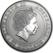 Australia 30 Dollars Koalas on a tree branch 2011 ELIZABETH II AUSTRALIA 30 DOLLARS IRB coin obverse
