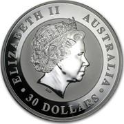 Australia 30 Dollars Kookaburra perched on a tree stump 2011 ELIZABETH II AUSTRALIA 30 DOLLARS IRB coin obverse