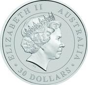 Australia 30 Dollars Resting Koala 2017 ELIZABETH II AUSTRALIA 30 DOLLARS IRB coin obverse