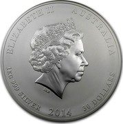 Australia 30 Dollars Year of the Horse (Colorized) 2014 ELIZABETH II AUSTRALIA 1 KG 999 SILVER 2014 30 DOLLARS IRB coin obverse