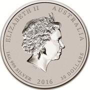 Australia 30 Dollars Year of the Monkey (Colorized) 2016 ELIZABETH II AUSTRALIA 1 KG 999 SILVER 2016 30 DOLLARS IRB coin obverse