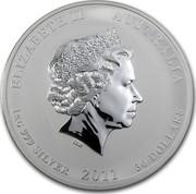 Australia 30 Dollars Year of the Rabbit (Colorized) 2011 ELIZABETH II AUSTRALIA 1 KG 999 SILVER 2011 30 DOLLARS IRB coin obverse