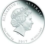 Australia 30 Dollars Year of the Rooster 2017 ELIZABETH II AUSTRALIA 1 KG 9999 AG 2017 30 DOLLARS IRB coin obverse