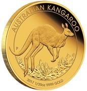 Australia 5 Dollars Kangaroo 2017 AUSTRALIAN KANGAROO 2017 1/20 OZ 9999 GOLD P JM coin reverse