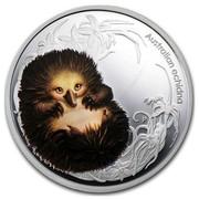 Australia 50 Cents Bush Babies Echidna 2013 AUSTRALIAN ECHIDNA P EM coin reverse