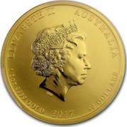 Australia 50 Dollars Year of the Rooster 2017  ELIZABETH II AUSTRALIA 1/2 OZ 9999 GOLD 2017 50 DOLLARS IRB coin obverse