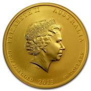 Australia 50 Dollars Year of the Snake (Orange) 2013 ELIZABETH II AUSTRALIA 1/2 OZ 9999 GOLD 2013 50 DOLLARS IRB coin obverse